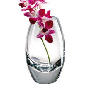 Badash Crystal Vase