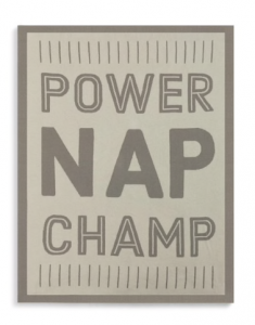 Tan and brown Woven Blanket that reads Power Nap Champ